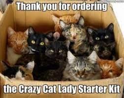 Top 11 Best Pics of the Crazy Cat Lady Meme (Photos) | Crazy cat ...